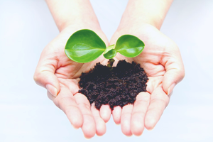 環境エコ事業